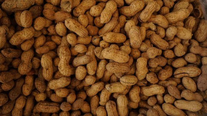 Un tas d'arachides non grillées.